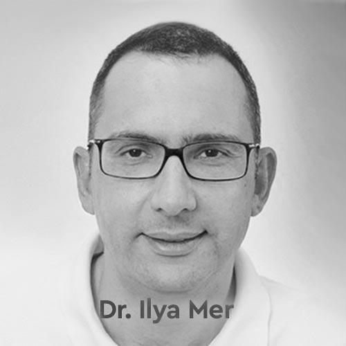 Dr. Ilya Mer CV